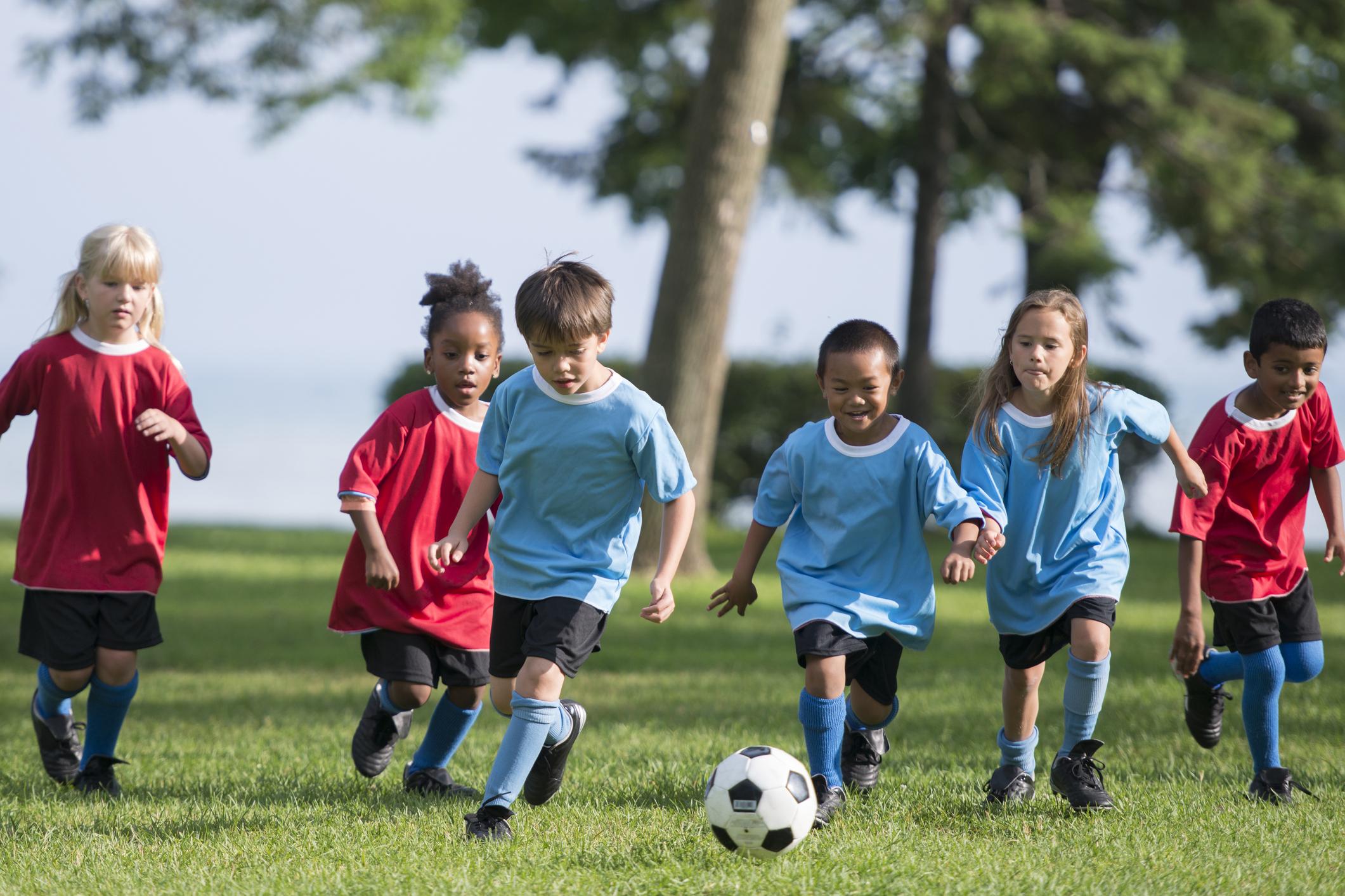 Спортивные секции 16